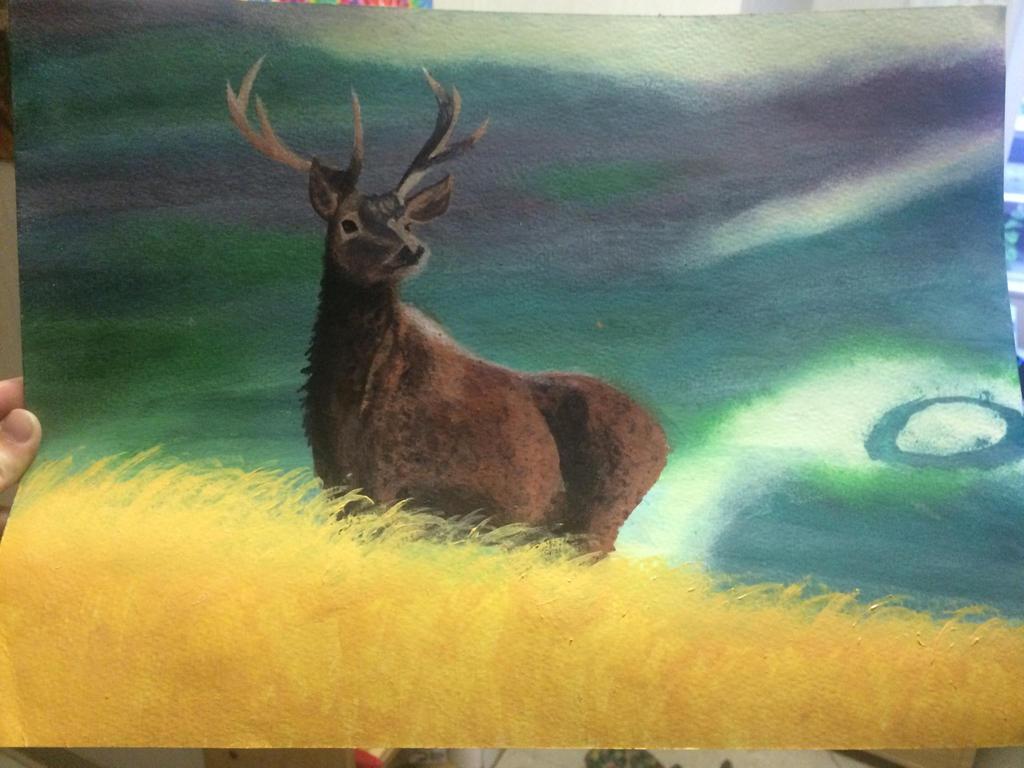 Elk in a pasture  by LaurenFunn