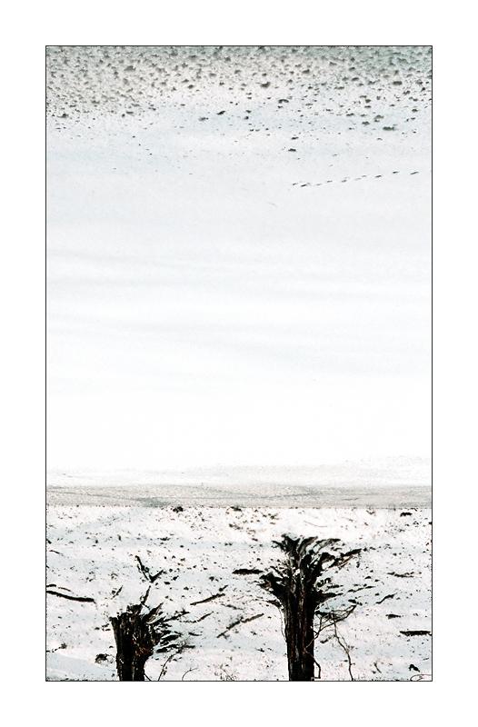 wind by Irena-Marta