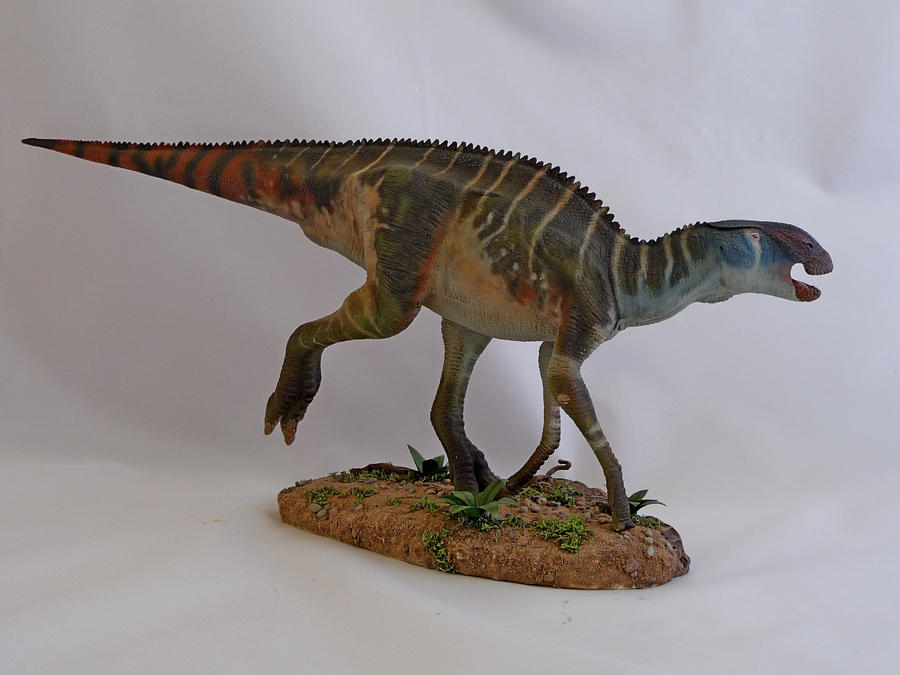 brachylophosaurus - photo #21
