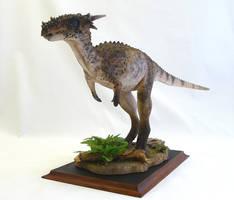 Dracorex hogwartsia by Baryonyx-walkeri