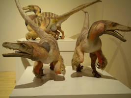 Dromaeosaur by Baryonyx-walkeri