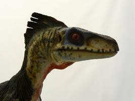 Velociraptor modified by Baryonyx-walkeri