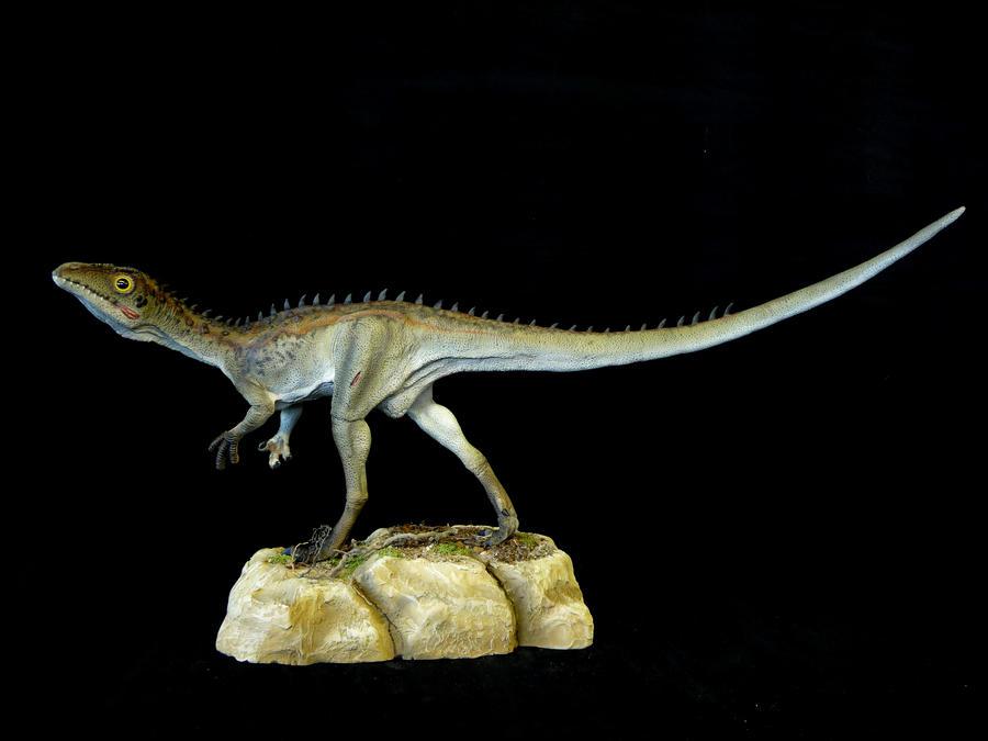 Juravenator 1 by Baryonyx-walkeri