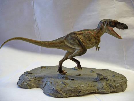 Gorgosaurus 1