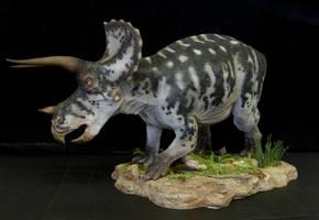 Triceratops by Baryonyx-walkeri