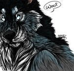 Realwolf