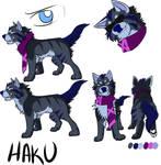 2016 Haku Character sheet by TehBobcat