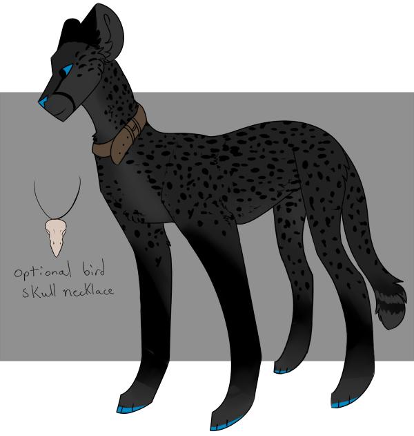 Melanistic Cheetah
