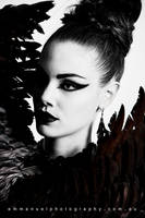 Black Swan Beauty by Amber-jade16