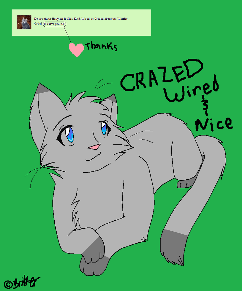 Question 2- Hollyleaf is Crazed by Ask-Dovewing on DeviantArt