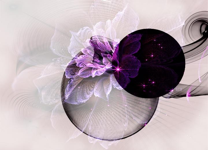 purple flower texture by dlr designs