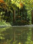 Evergreen by MarianthiZ