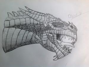 Draw-O's Profile Picture