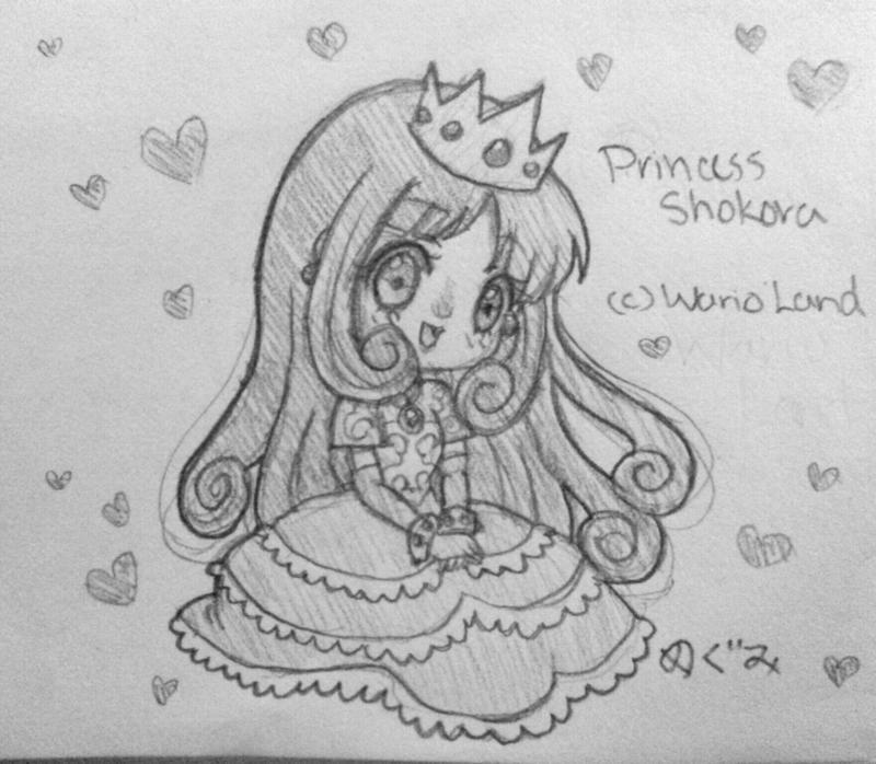 Princess Shokora by Megumi-Kawairashii