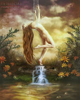 Fly to the sky by irinama