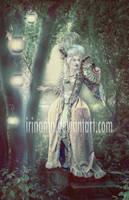 Meet in the dark by irinama