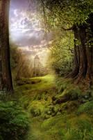 BG Fantasy Forest  stock by irinama
