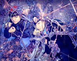 Grapes by irinama