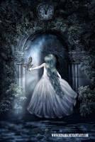 Magic door by irinama