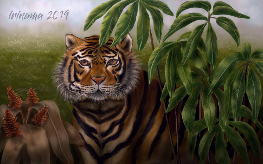Tiger by irinama