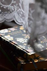 Soft spot for beautiful books :)