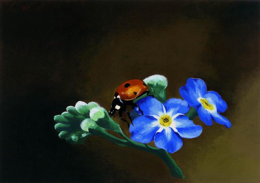 Ladybird by Li-Soro