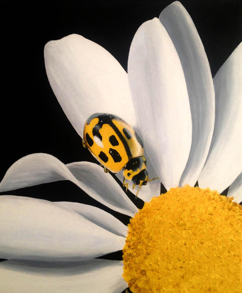 Yellow ladybird by Li-Soro