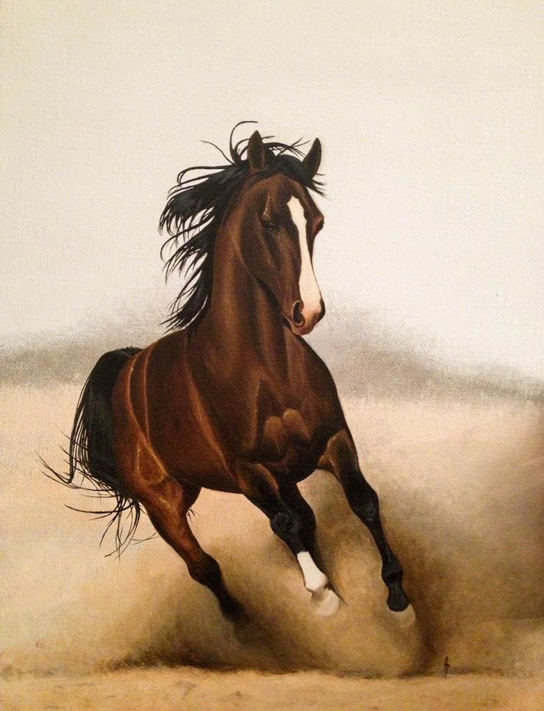 Arabian stallion by Li-Soro