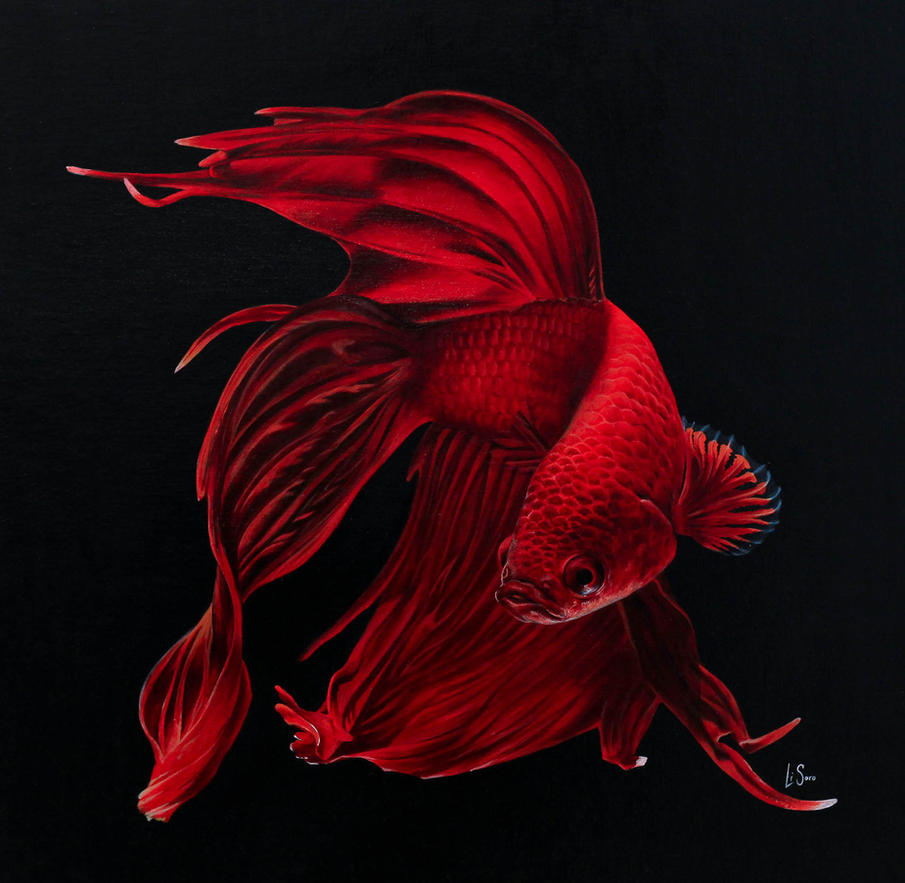 Siamese fighting fish. Painting, Acrylics on Board by Li-Soro