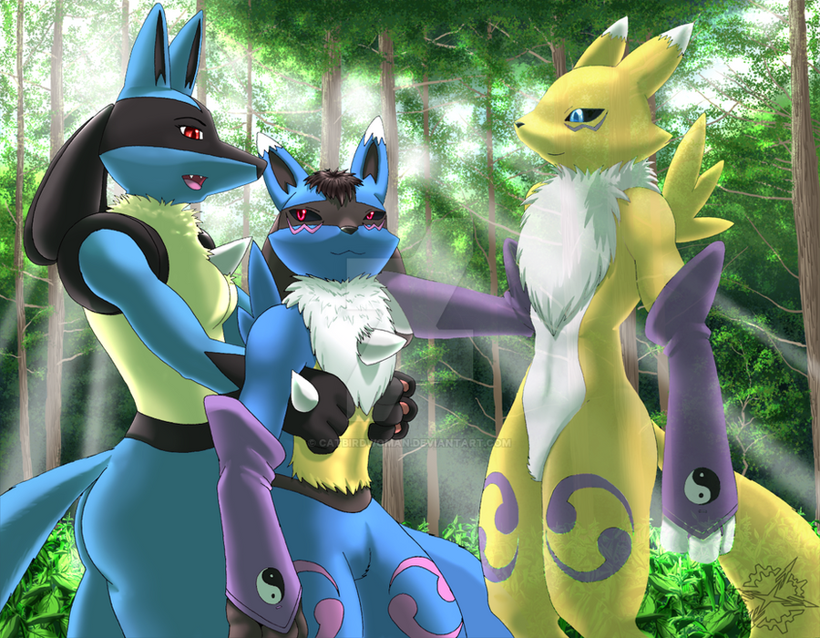 Rylan Lucario Reference by AzzyFox on DeviantArt
