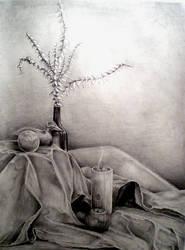 Still life... by JKantz