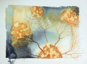 Synapse no2