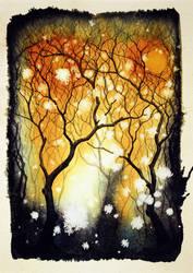 dogwood grove