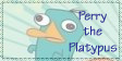 Perry the Platypus by Twilighter95