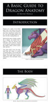A Basic Guide to Dragon Anatomy