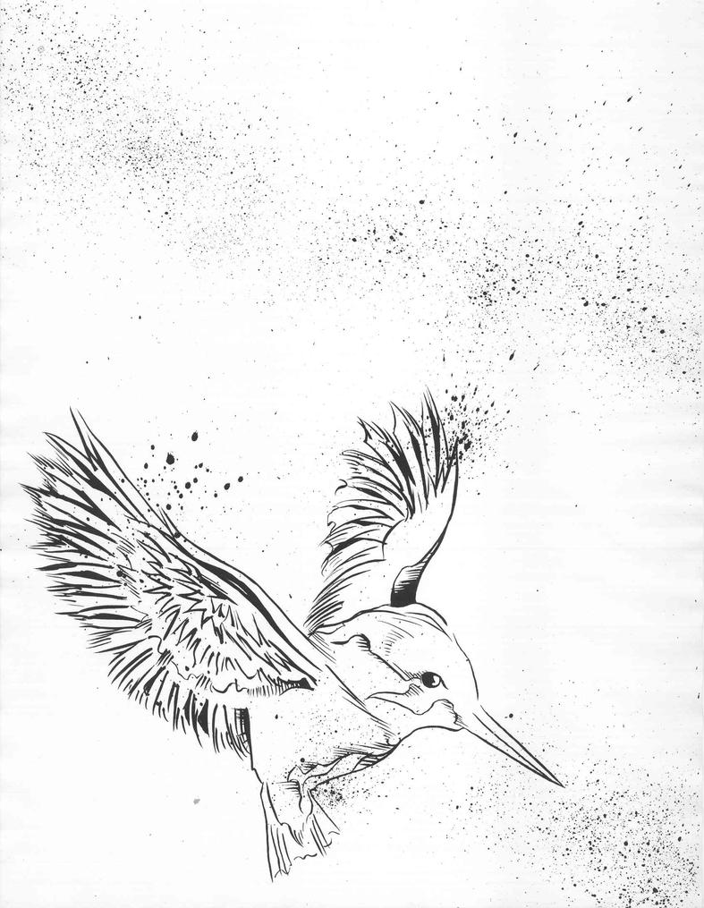 Line Drawing Kingfisher : Is it the kingfisher by bunnyluz on deviantart