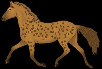 Horse (Hyena Coat) by CloudedLatha