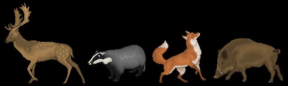 British Wildlife by CloudedLatha