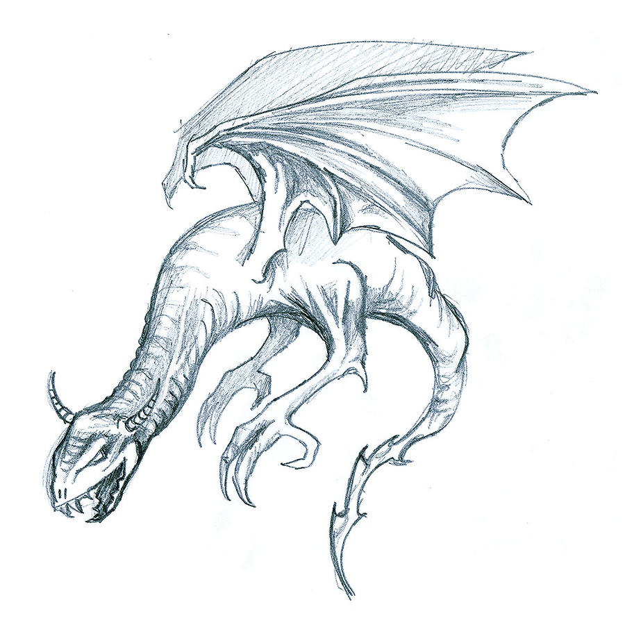 Dragon sketch by yeraymuaddib