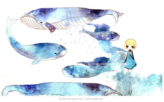 The Whale Creator