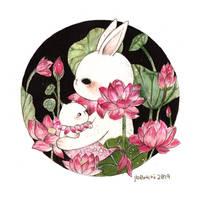 Mermay #11 - Lotus