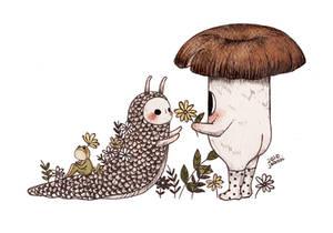 Mushroom and Slug