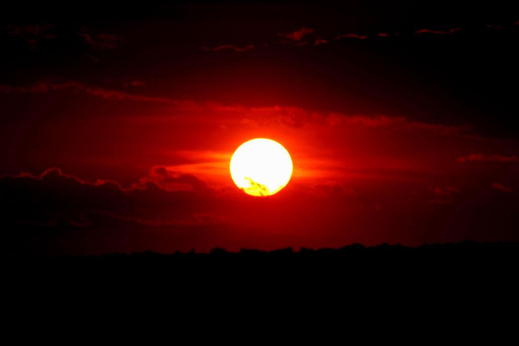 The Lion King Sunset By Lainaschlag On Deviantart