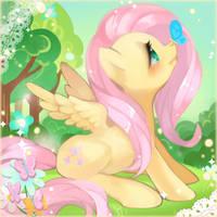 Fluttershy by bnob