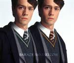 Tom Riddle in Gryffindor v1