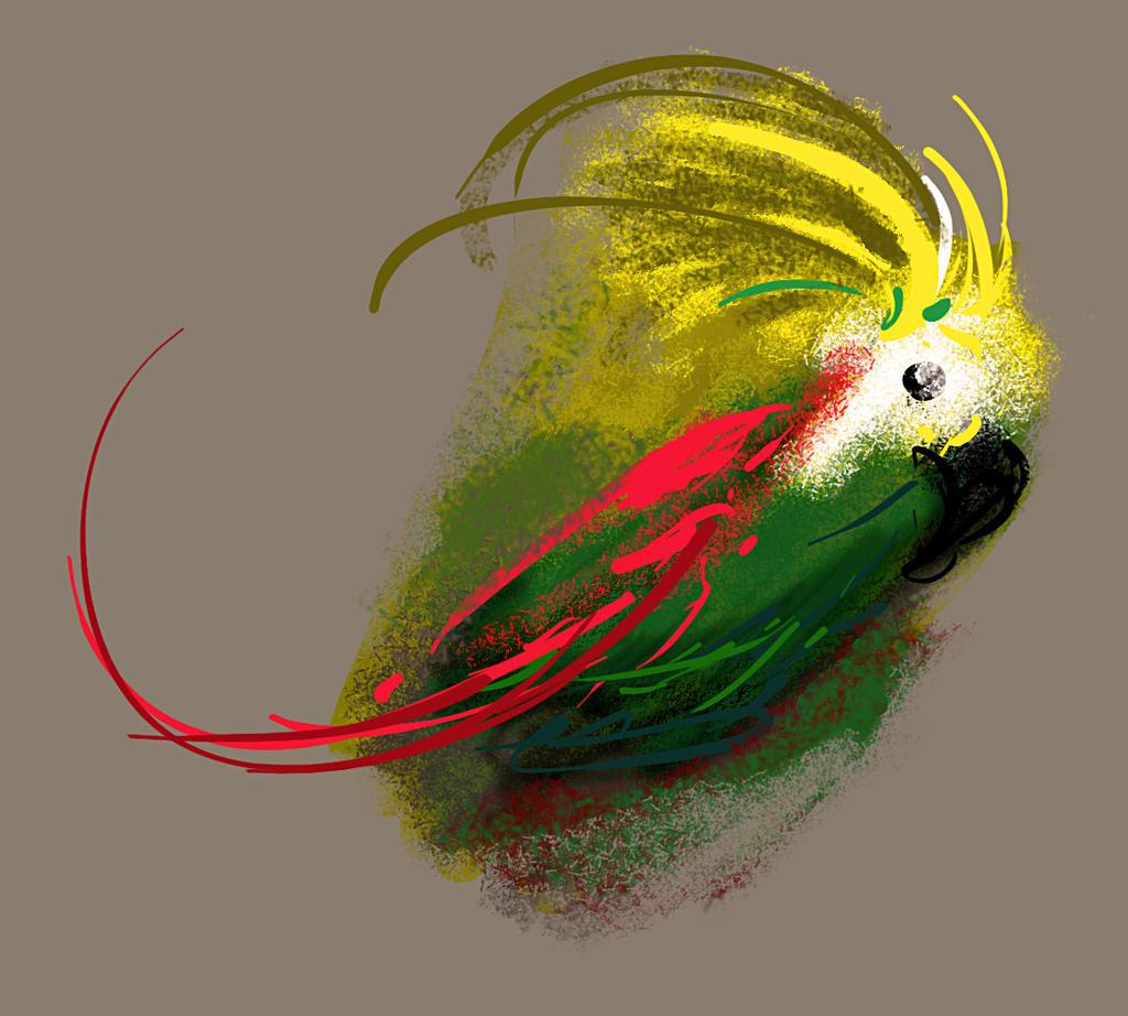 Bird by JonPlsek