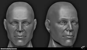 Head Sculpt by j--o--h