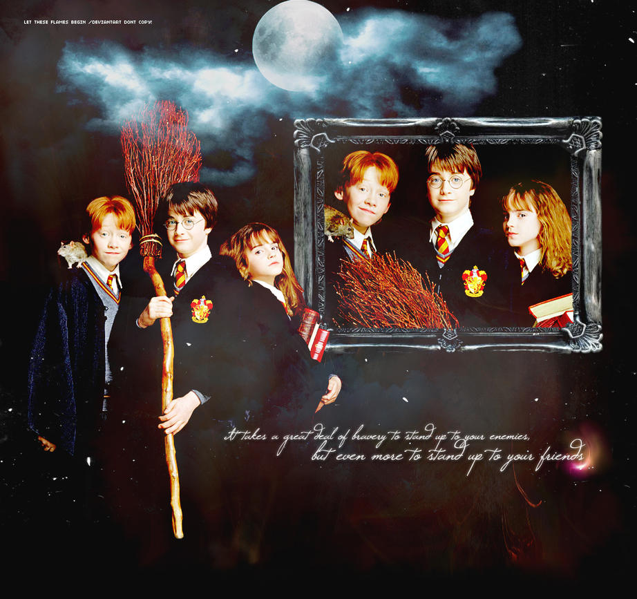 True Gryffindors by lettheseflamesbegin