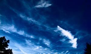 Foreboding blue skies