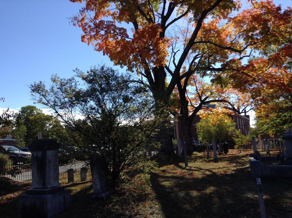 Cemetery In Autumn by TarmaHartley